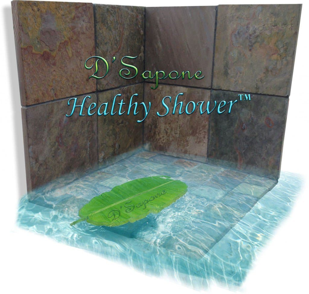 Healthy Shower Restoration Slate DSapone Before