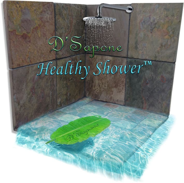 dsapone-healthy-shower-slate-restoration