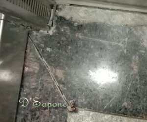 Granite Floor Cleaning and Sealing Services