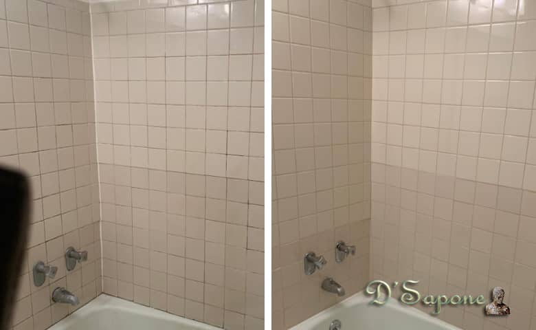 Quality Caulking and Mold Removal Contractors dsapone.jpg